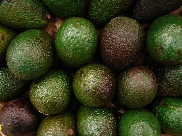 fruit-avocado-1562329.jpg