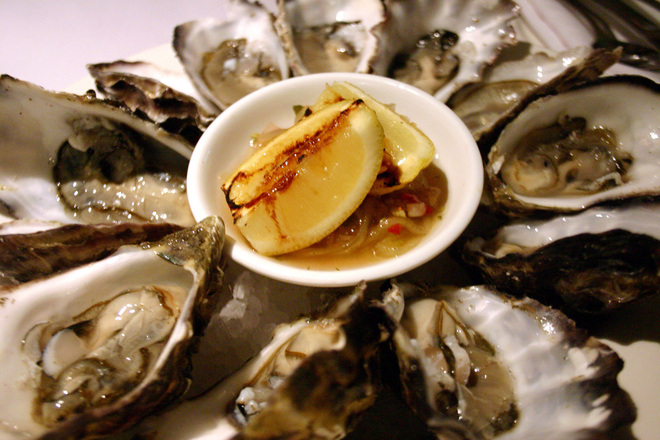 oysters-1512278.jpg